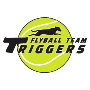 Triggers Flyball Team