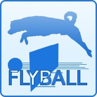 ico_flyball