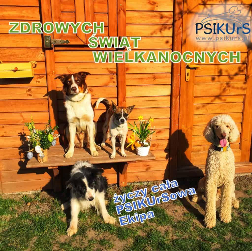 wesolych_swiat